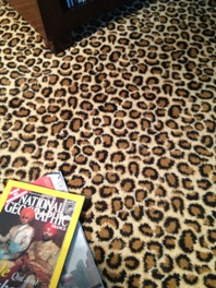 Leopard print broadloom carpet - Axminster carpet with cheetah skin patern