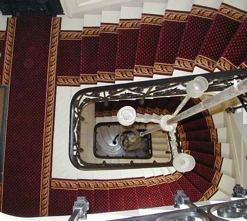 Stair case fitted with pindot design stair runner from A3C Carpets with acanthus leaves borders